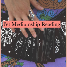 Pet Mediumship Reading via Miss Melinda