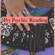 Psychic Pet Reading with Miss Melinda